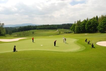 Men and Women Playing Golf